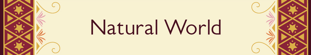 The Natural World Books