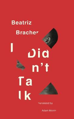 I Didn't Talk by Beatriz Bracher book jacket