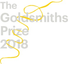 The Goldsmiths Prize
